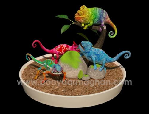 Chameleons Turntable